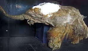 yuka mammoth