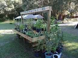 florida native plants for sale quilt day and heritage plant sale visit natural north florida