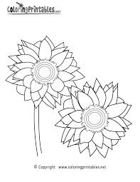 sunflower coloring page a free nature coloring printable clip