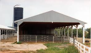 cattle barns 36 u0027 x 108 u0027 cattle show barn barns pinterest