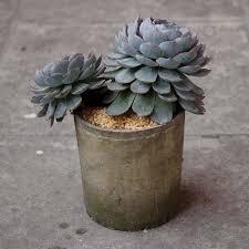 Decorative Indoor Planters Online Get Cheap Decorative Indoor Planters Aliexpress Com