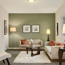 15 contemporary grey and green living room designs green accent