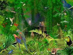 of the jungle cartoon children s wall mural ohpopsi wallpaper jungle wallpapers