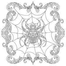 spider zentangle coloring stock illustration image 63487435