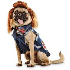 dog costumes funny costumes for dogs u0026 puppies petco