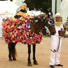 Halloween Costumes Horse 16 Horse Costumes Images Costume Ideas Horse