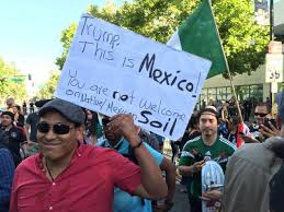 Mexicans Flags Anti Donald Trump Protesters Tear American Flag At San Jose Rally