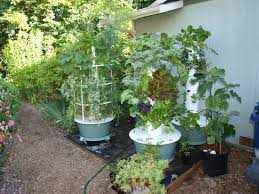 Backyard Organics Tower Garden Difference Between Organic And Hydronponic Gardening