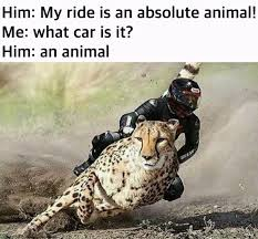 Funny Motocross Memes - absolute animal ctom credit to nissan 420sx