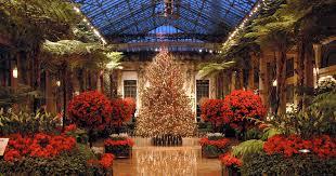 christmas tree flower lights a longwood christmas celebrates the season with lights flowers