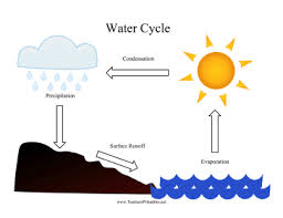 Water Cycle Worksheet Pdf Water Cycle Chart Png