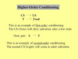 conditioned inhibition ppt video online download