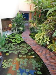 plant a garden present modern narrow pond with water lilies and