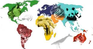 planing the 2017 world animal day wad is observed on which
