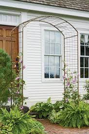 best 25 rose trellis ideas on pinterest trellis ideas trellis