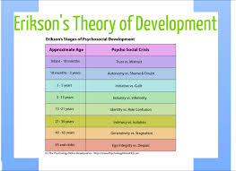 erikson u0027s theory of development study cheat sheets pinterest