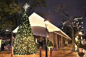 philadelphia neighborhoods light up with 2014 tree lighting