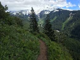 Mt Hood Trail Map Bald Mountain From Lolo Pass Trail Oregon Maps 69 Photos 47