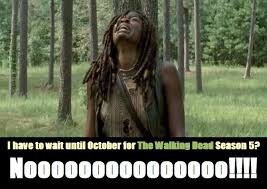 Walking Dead Memes Season 2 - some stuff and things to do until the walking dead season 5