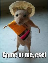 Mexican Sombrero Meme - hispanic meme come at me ese