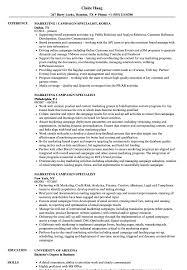 international relations specialist resume marketing campaign specialist resume samples velvet jobs