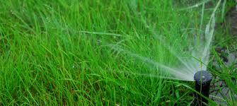 irrigation systems daly property services inc