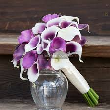 picasso calla lavender purple and picasso calla thebridalflower