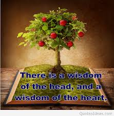 tree of quote magnificent tree of wisdom quote