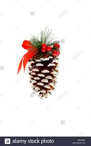 Decorating Pine Cones With Glitter Large Pine Cone Stock Photos U0026 Large Pine Cone Stock Images Alamy