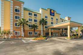 Comfort Suites Maingate East Kissimmee Florida Comfort Inn Kissimmee 2017 Room Prices Deals U0026 Reviews Expedia