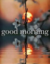 good morning pictures photos and images for facebook