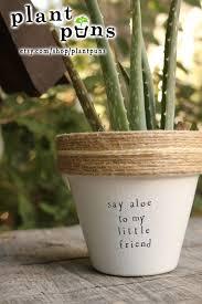 4 say aloe to my little friend aloe vera cute
