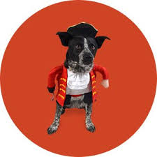 Ghost Dog Halloween Costumes Pet Halloween Costumes Target