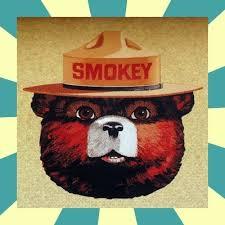 Smokey The Bear Meme Generator - smokey the bear meme generator