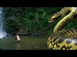 vidio film ular anaconda piranhaconda trailer youtube
