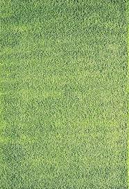 Grass Area Rug Grass Area Rug Grass Area Rug Large Area Rugs Grass Field Area Rug