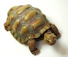 collectable tortoise turtle ornaments figurines ebay