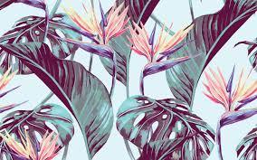 Jungalow From Hawaiian Shirts To Lush Interiors 3 Ways Tropical Design Is