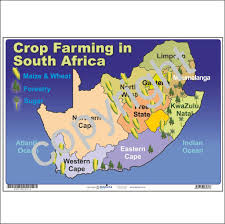 a picture of south africa map map of crop farming in south africa depicta
