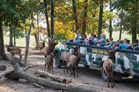 safari take our exciting safari tour in halifax pa at lake tobias