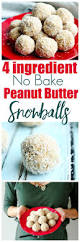 best 25 snowballs recipe ideas on pinterest snowball cookies