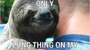 Sloth Jokes Meme - a sloth that rapes youtube