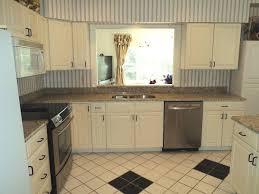 kitchen cabinets lighting furniture dark kitchen cabinets with under cabinet lighting and
