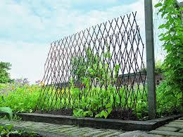 pea u0026 bean support frames gardening shop uk