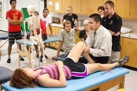 therapy classes csulb adds a doctorate program in physical therapy daily 49er