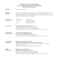 Bad Resumes Examples by Resume Summary Examples For High Students Professional