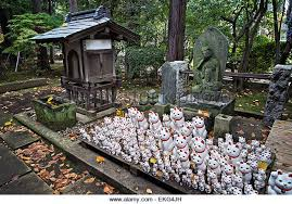 cat island cat island japan stock photos cat island japan stock images alamy