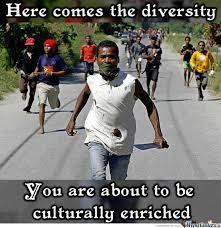 Cultural Memes - cultural diversity at its finest by taxford meme center