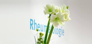 Rheumatologe Baden Baden Rheumatologe Rheumapraxis In Heidelberg Atos