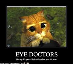 Eye Doctor Meme - 98286f03ae133231fe28e753f35aa8a4 jpg 736纓644 work fun